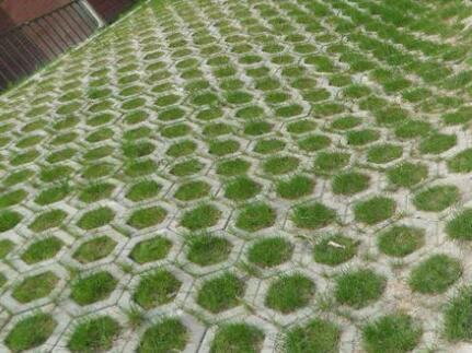 护坡砖1.jpg